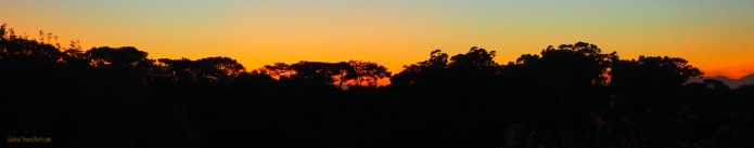 Afrikanisches Morgenrot